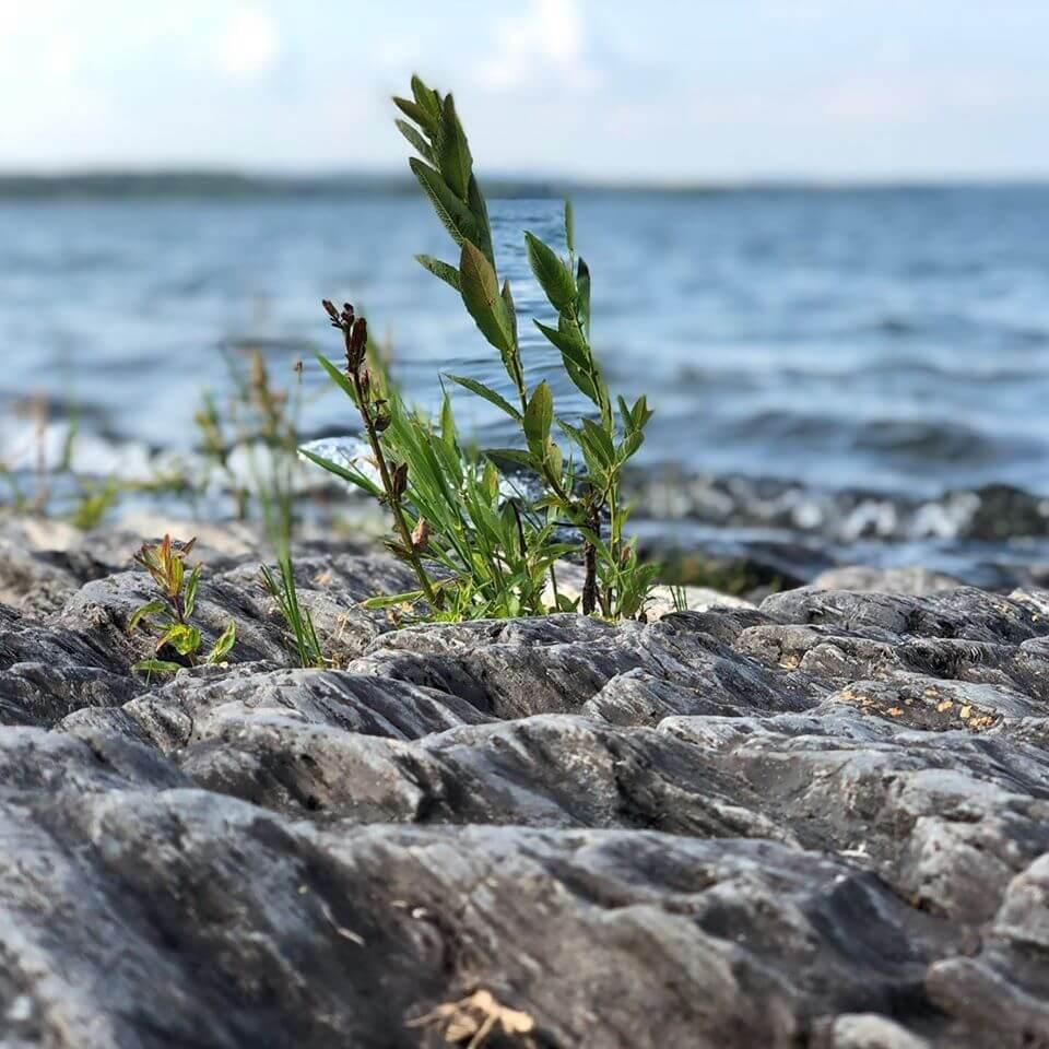Aktivcamp Geführt in Schweden – 10 Tage 8