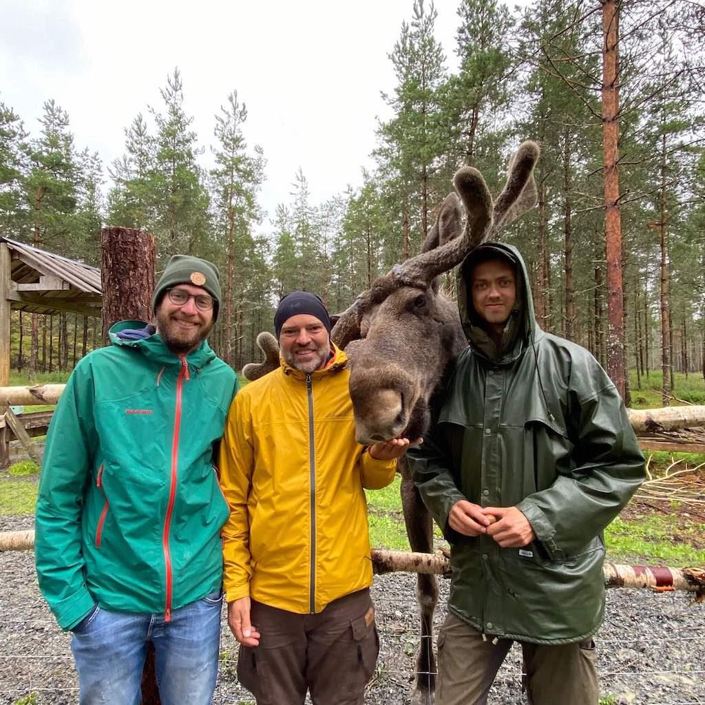 Aktivitäten in und um Bengtsfors: Die Dalsland Moose Ranch 17