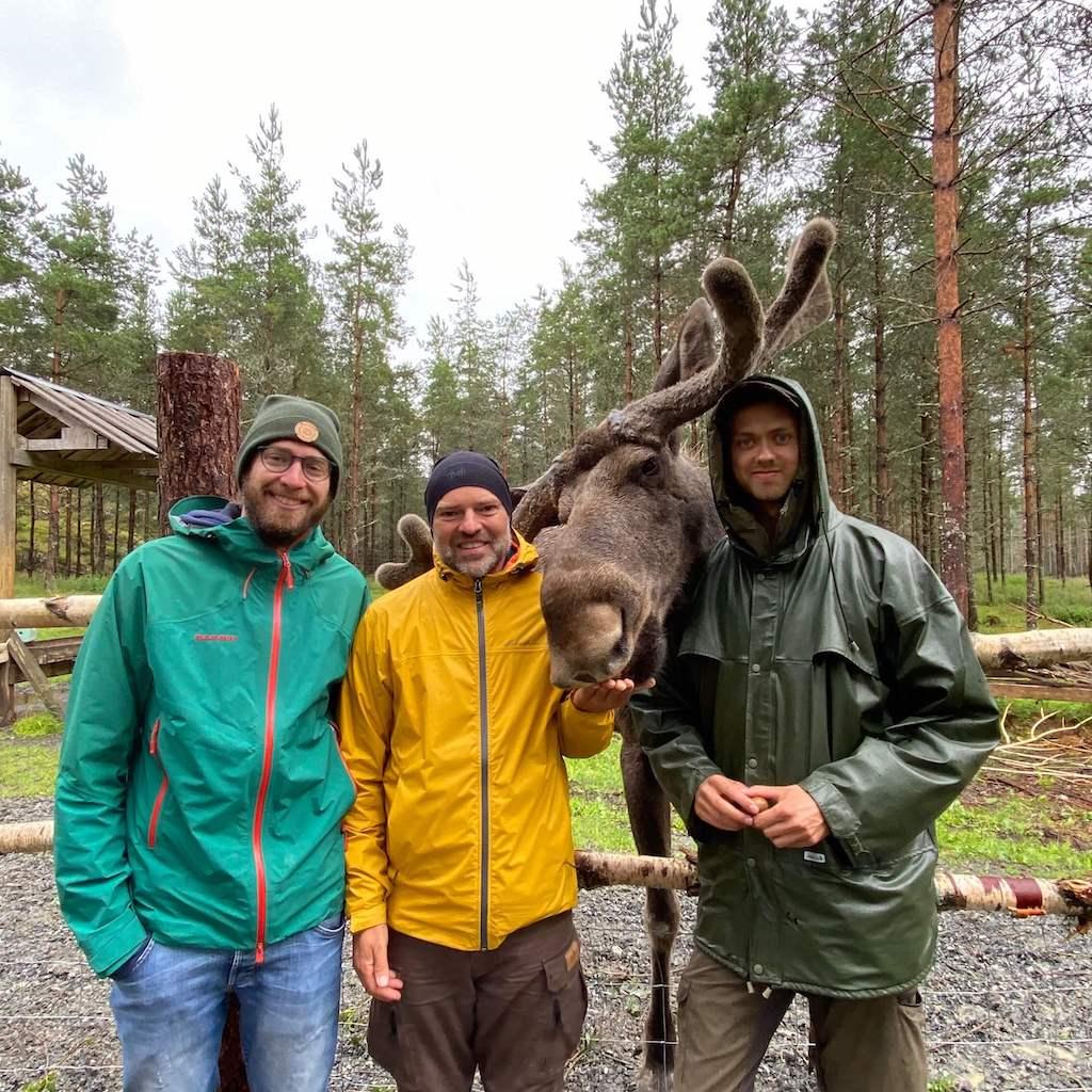 Aktivitäten in und um Bengtsfors: Die Dalsland Moose Ranch 1